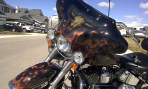 airbrush-horns-bike