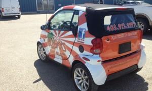 gilligans smart car rear
