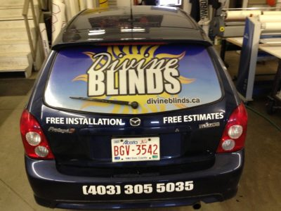 Rear Window Perforated Decal & Decals // Fleet Marking