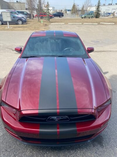 Mustang Stripes // Cars